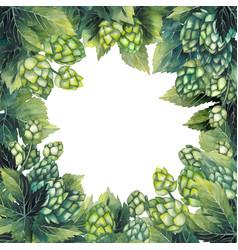 watercolor hop design vector image