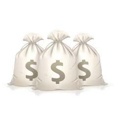 Three bags of money vector image