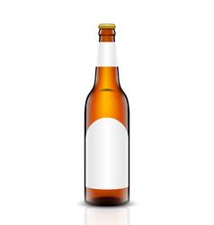 Beer bottle set vector