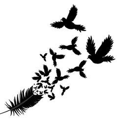 Feather bird vector
