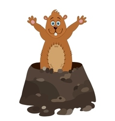 Funny groundhog cartoon vector