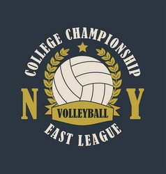 volleyball new york print for t-shirt vector image