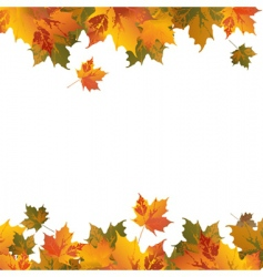frame with leafs vector image vector image