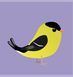 An american goldfinch comic vector