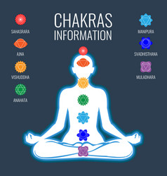 chakras information and white human body on dark vector image