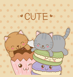 Cute little cats with sweet donuts kawaii vector