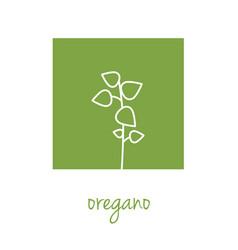 Oregano icon on green square vector