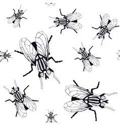 Seamless pattern with image flies vector