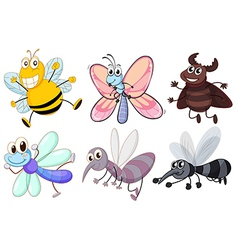 Six flying insects vector