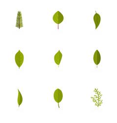 leaflet icons set flat style vector image