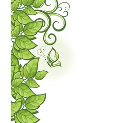 Abstract beautiful green floral background vector image vector image