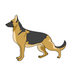 Cartoon of german shepherd dog vector