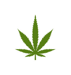 logo marijuana leaf isolated on white background vector image