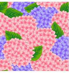 pink and purple hygrangea flower seamless vector image