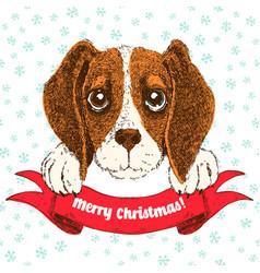 sketch of funny beagle puppy vector image