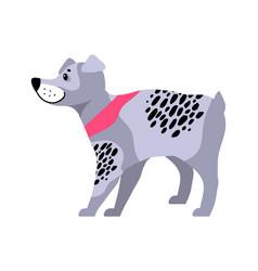 cute grey dog with black spots vector image vector image