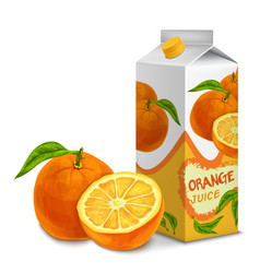 Juice pack orange vector image vector image
