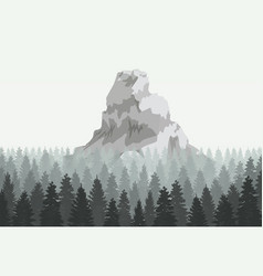 musterious coniferous mountain in forest vector image
