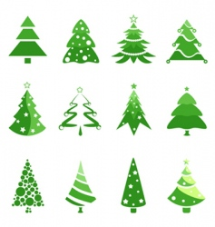 Pine tree for Christmas vector
