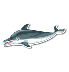 sticker template with a dolphin cartoon character vector image