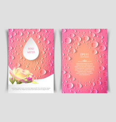 two-sided vertical flyer of a4 format with roses vector image