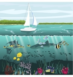Yacht and underwater scenery with marine life vector