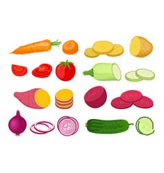 vegetable set garden plants in flat style vector image vector image