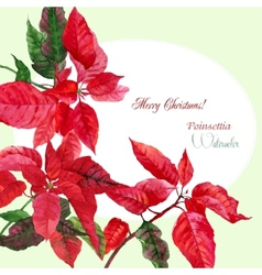 Background with red Christmas poinsettia-03 vector image