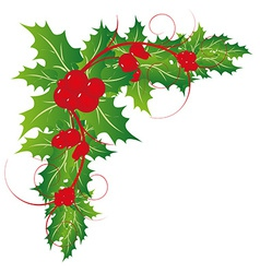 Christmas holy leaves ornament vector image