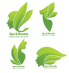 collection of spa and beauty symbols and signs vector image