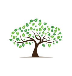 Logos green tree leaf ecology nature vector