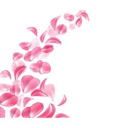 Realistic rose cherry sakura petal wave vector