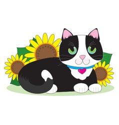 Tuxedo Cat vector image