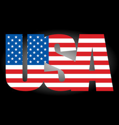 usa flag text icon vector image
