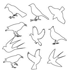 birds icon vector image vector image
