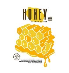 Stock of honeycomb vector image