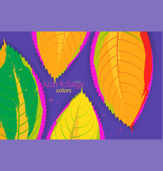 Abstract leaf colors vector