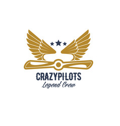 Air pilots team retro airplane icon vector
