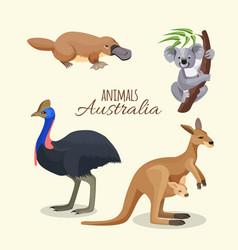 australia animals collection brown kangaroo vector image