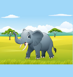 cartoon funny elephant in the jungle vector image