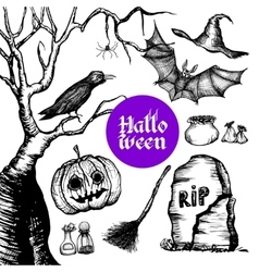 Halloween Hand Drawn Set vector