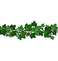 ivy leaves branchsummer green border seamless vector image