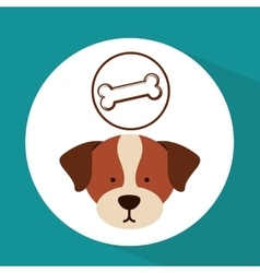 Veterinary dog care bone food icon vector