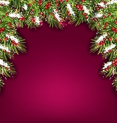 Holiday Background with Fir Branches and Berries vector image vector image