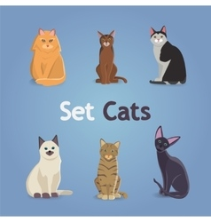 Collection of Cats and Dogs of Different Breeds vector image