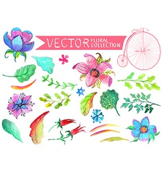 Watercolor flowers collection vector image vector image
