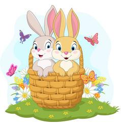 couple rabbit cartoon in basket vector image
