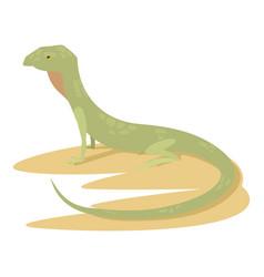 curious lizard icon cartoon style vector image