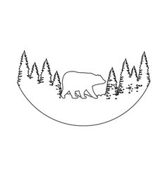 pines trees forest scene with bear grizzly vector image