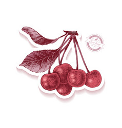 sticker with hand drawn cherry branch vector image